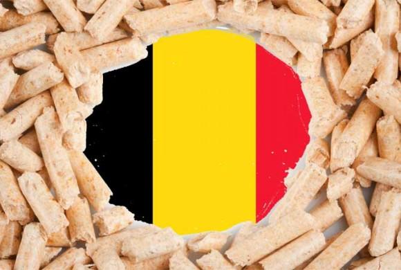 La Belgique est championne d'Europe du pellet